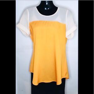 Sheer Block Coloured T-shirt